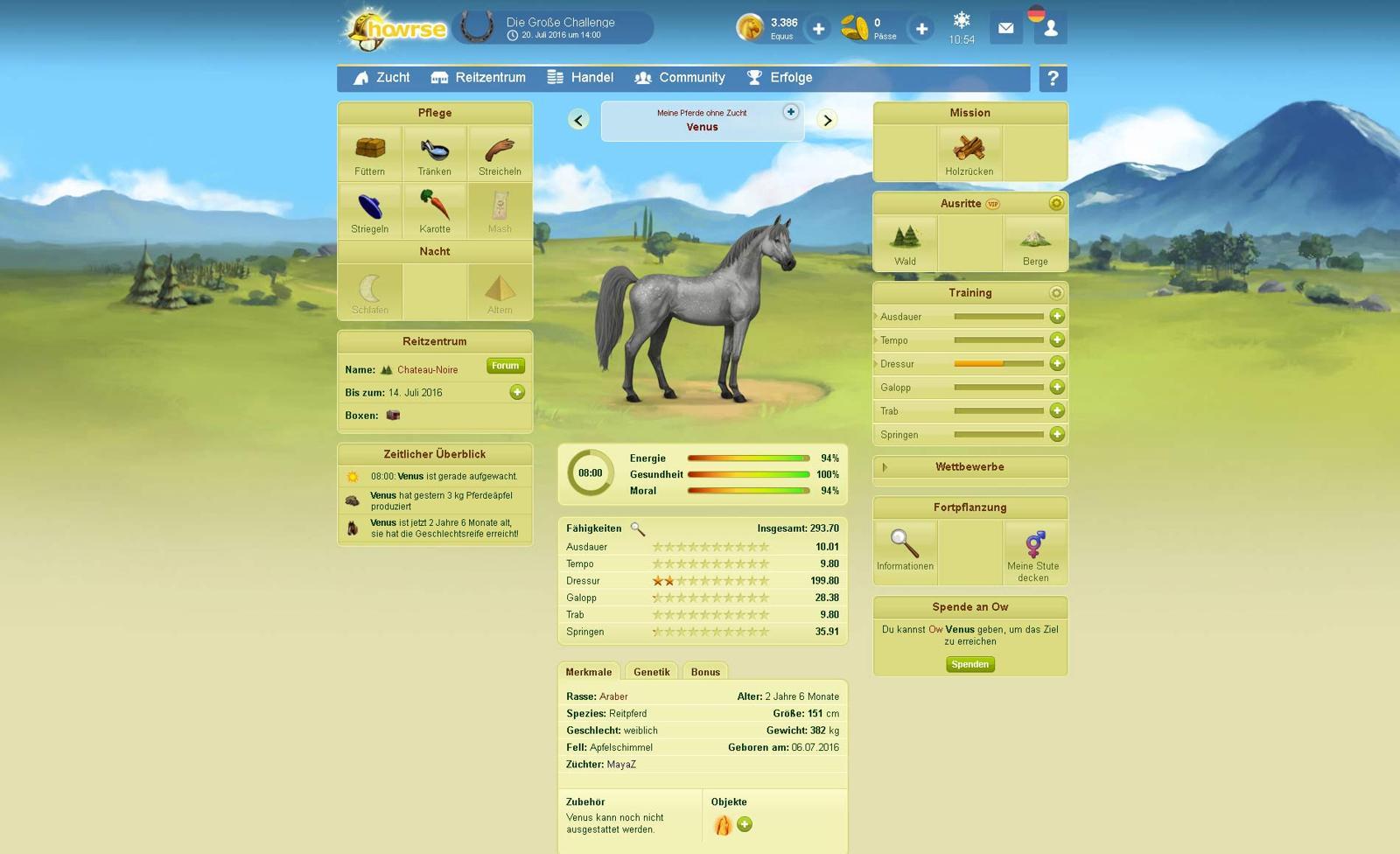 howrse_tnt-spiele-screenshots-07_DE_1600px
